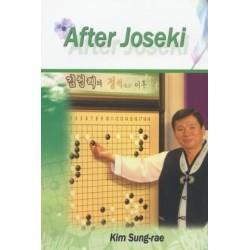 After joseki - Kim Sung-Rae